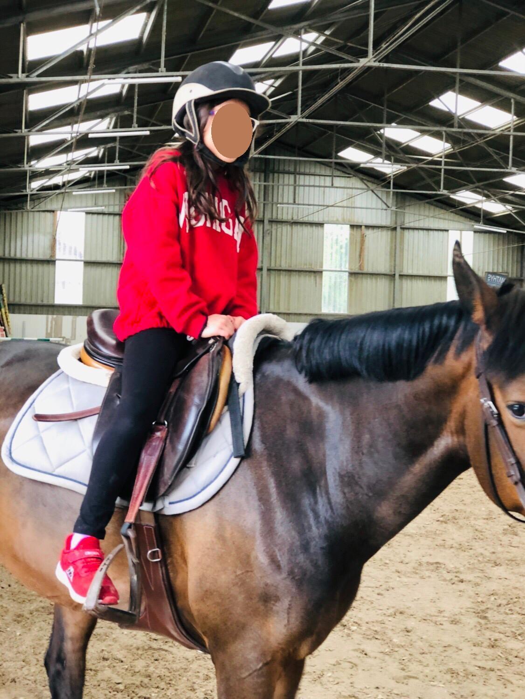 A cheval sur mon dada