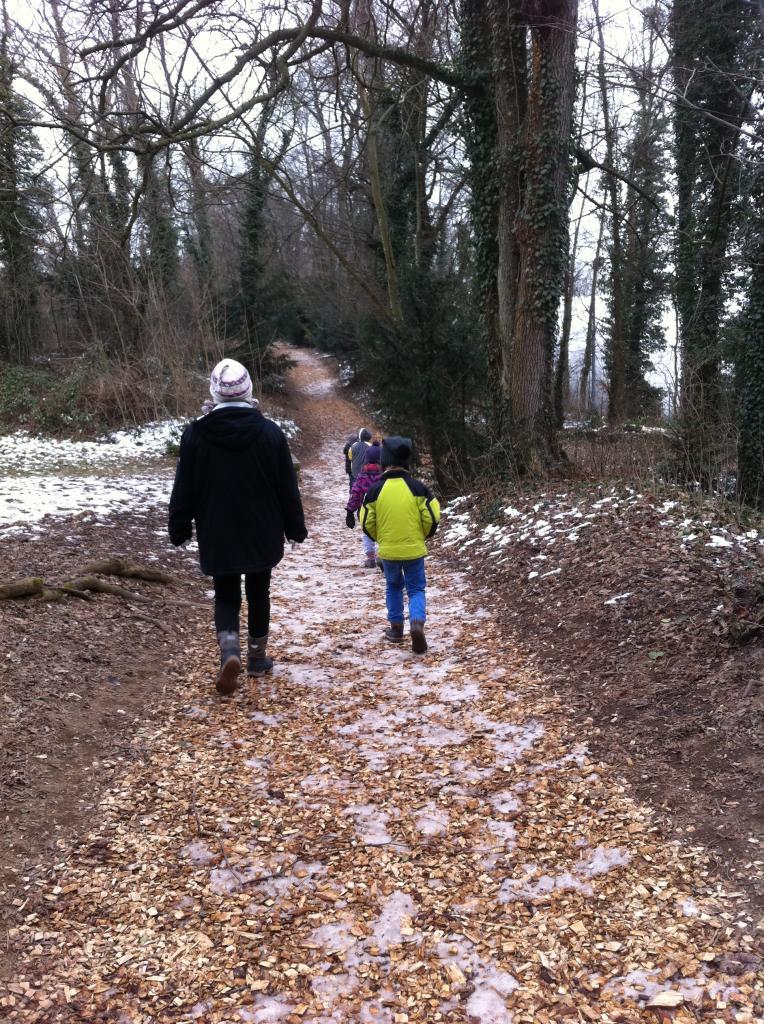Le charme hivernal des chemins vicinaux