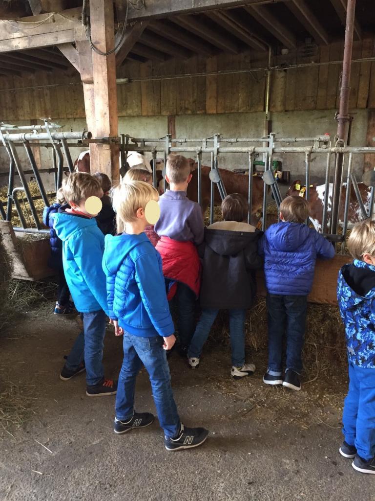 Visite à la ferme de Genthod
