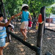 Koh-Lanta l'épreuve des poteaux
