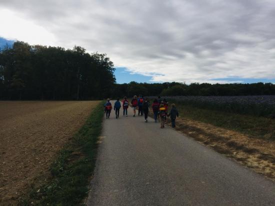 Balade dans la campagne Genthousienne